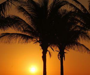 moving to Oviedo Florida