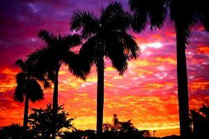 Moving to Lake Mary Florida