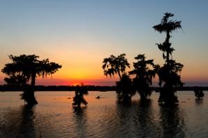 Moving to Louisiana